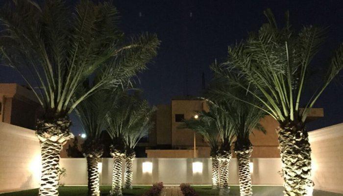 Kuwait englishdesigncompany for Garden design kuwait